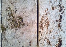 Pedra marès  (calcarenita o  eolianita)